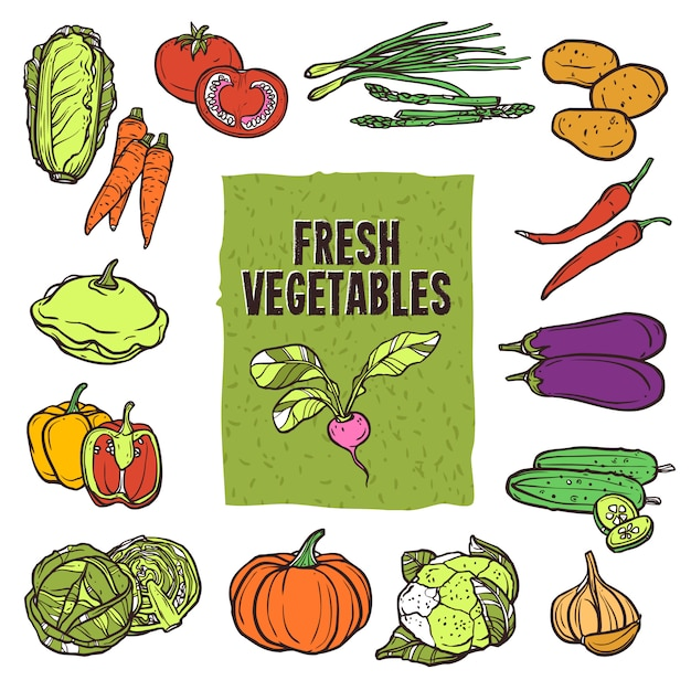 Ensemble de croquis de légumes Vecteur gratuit