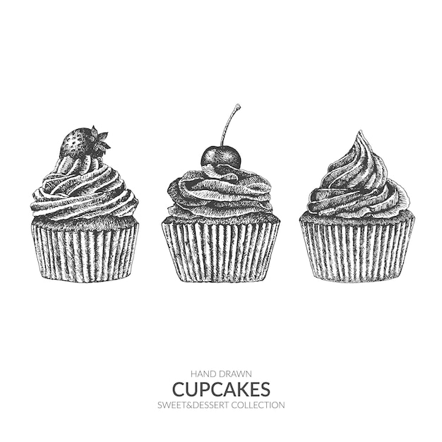 Ensemble De Cupcakes Collection De Sucreries Et De Desserts