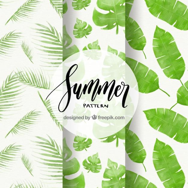 Ensemble de motifs d'été avec des feuilles de palmier aquarelles Vecteur gratuit