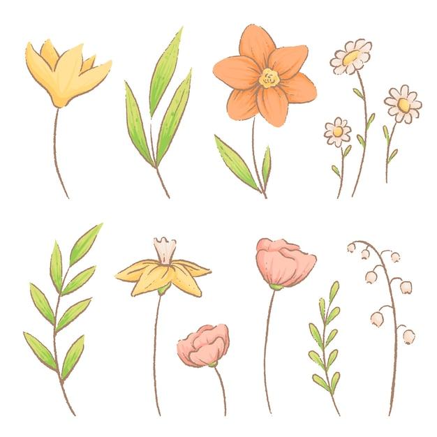 Ensemble De Différentes Fleurs Et Herbes De Printemps. Crocus, Marguerites Et Muguets. Vecteur Premium