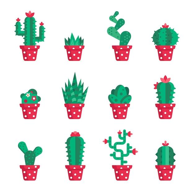 Ensemble De Différents Cactus Vecteur Premium