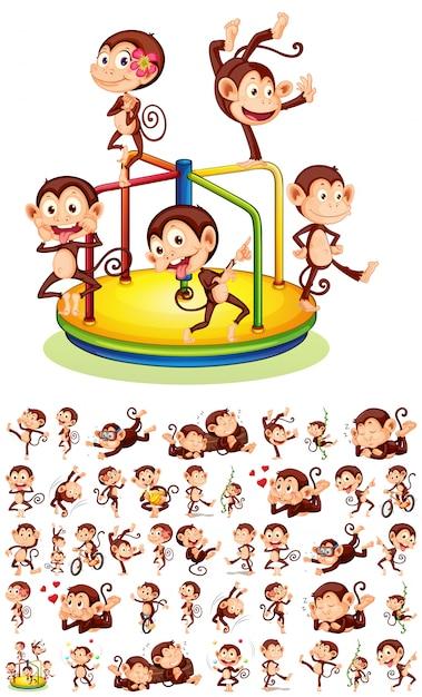 Ensemble de différents singes Vecteur gratuit