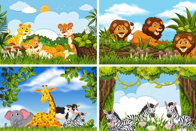 Ensemble de divers animaux dans des scènes de la nature Vecteur Premium