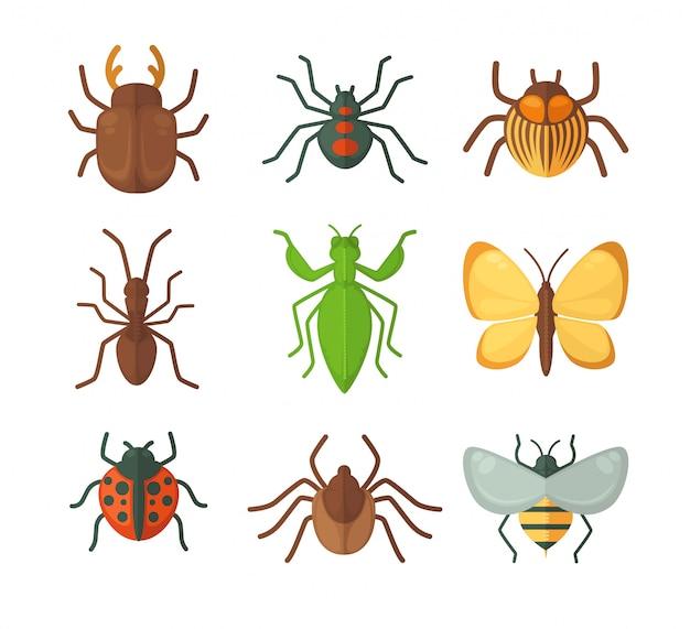 Ensemble de divers insectes Vecteur Premium
