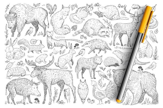 Ensemble De Doodle D'animaux Sauvages De La Forêt. Collection De Cerfs Renard Dessinés à La Main Ours Lapin écureuil Raton Laveur Buffle Hérisson Vivant Dans La Nature Sauvage Isolée. Vecteur Premium