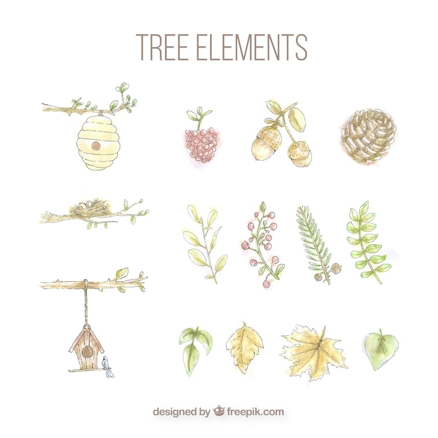 Ensemble D'éléments D'arbres Peints à L'aquarelle Vecteur gratuit