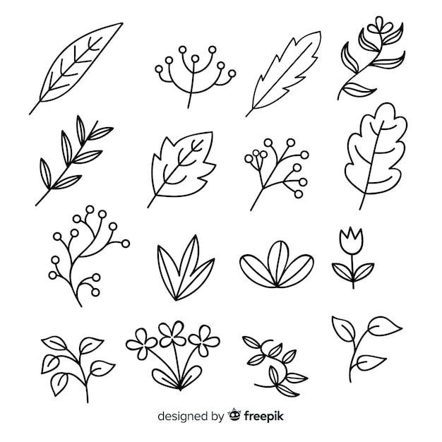 Ensemble d'éléments de décoration florale incolore dessinés à la main Vecteur gratuit