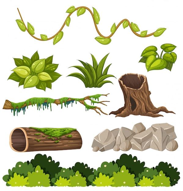 Un ensemble d'éléments forestiers Vecteur Premium