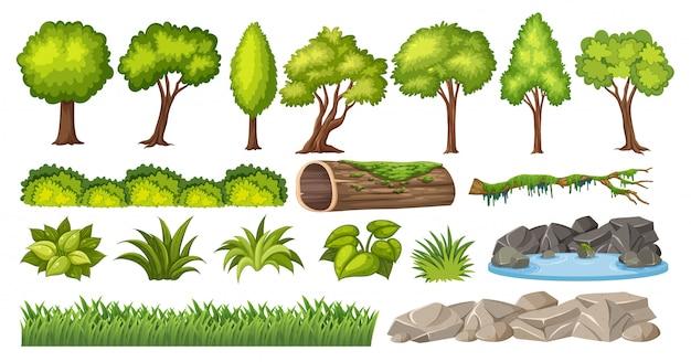 Ensemble D'éléments Naturels Pour La Décoration Vecteur Premium