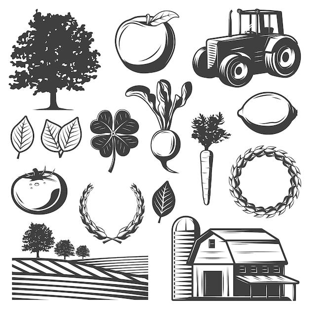 Ensemble D'éléments Naturels Vintage Vecteur gratuit