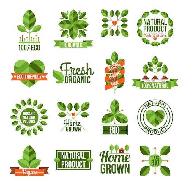 Ensemble d'étiquettes organiques et naturelles Vecteur gratuit