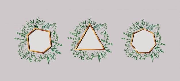 Ensemble de feuilles et cadres géométriques dorés Vecteur Premium