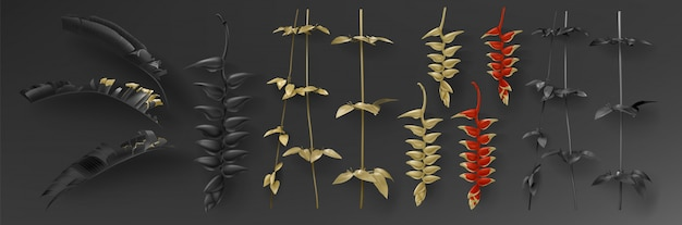 Ensemble de feuilles d'or et de noir tropical Vecteur gratuit