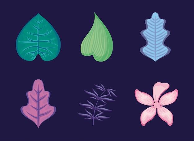 Ensemble de feuilles tropicales et de fleurs Vecteur Premium