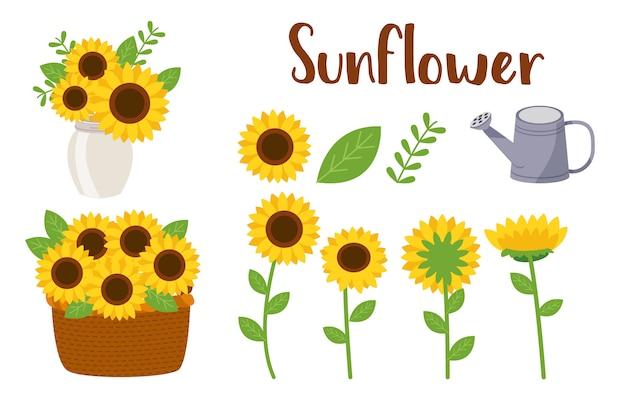 Ensemble de fleur du soleil Vecteur Premium