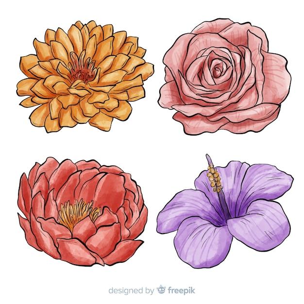Ensemble de fleurs dessinées à la main aquarelle Vecteur gratuit