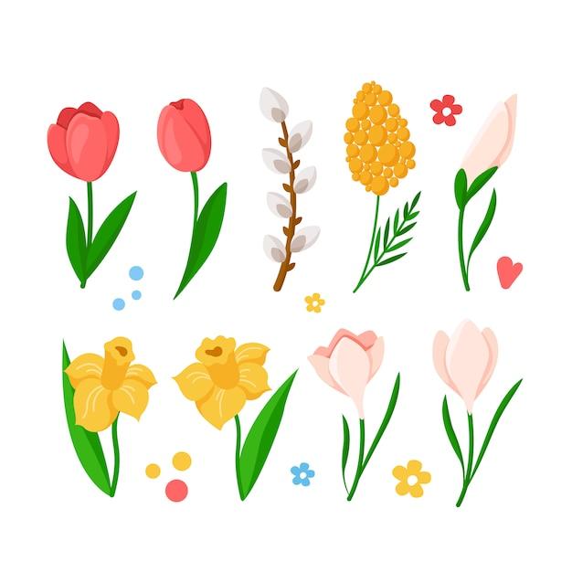 Ensemble De Fleurs De Printemps De Dessin Animé - Tulipes, Jonquille, Narcisse, Mimosa, Perce-neige, Branche De Saule, Vecteur Premium