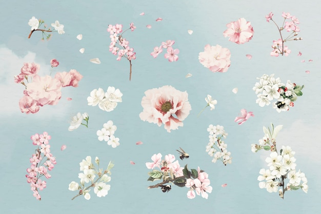Ensemble de fleurs roses Vecteur gratuit