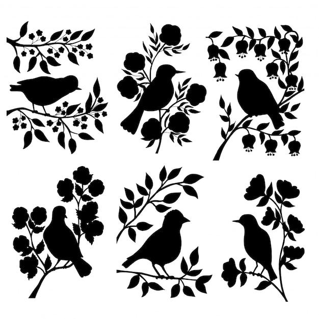 Ensemble De Fleurs Et Silhouettes D'oiseaux Vecteur Premium