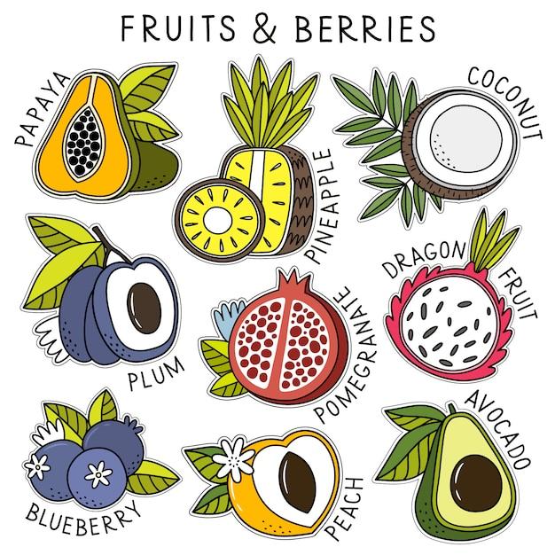 Ensemble de fruits et de baies Vecteur Premium