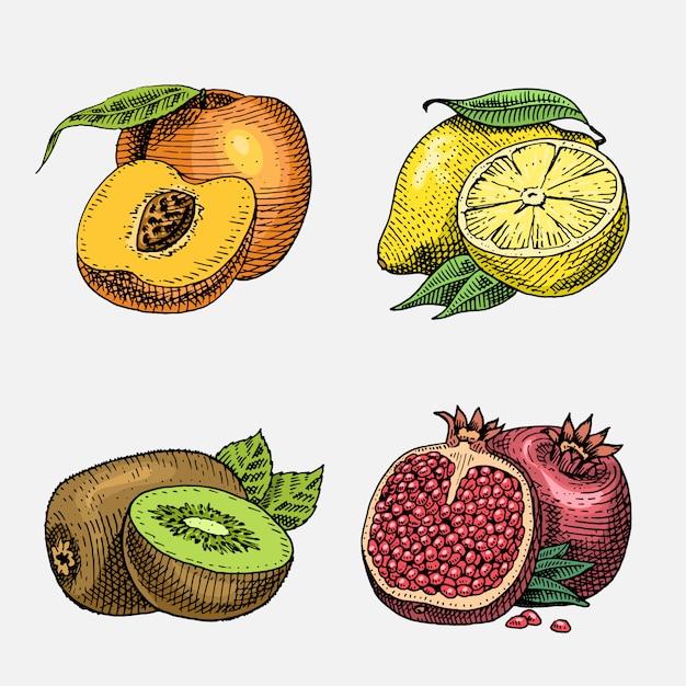 Ensemble De Fruits Frais Gravés, Dessinés à La Main, Nourriture Végétarienne, Plantes, Kiwi Vintage, Citron Jaune Pêche Et Grenade. Vecteur Premium