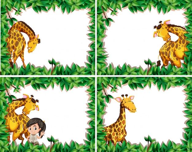 Ensemble de girafe dans un cadre naturel Vecteur gratuit