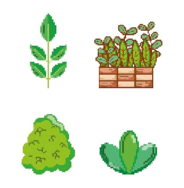 Ensemble D'icônes Pixélisées Jardin Et Nature Vecteur Premium