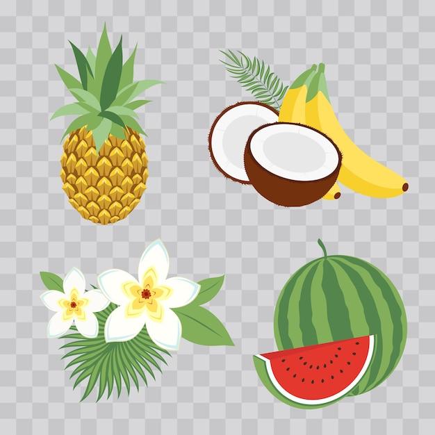 Ensemble d'icônes vectorielles illustration fruits tropicaux avec des feuilles et des fleurs. ensemble d'illustrations à la mode de vecteur isolé sur damier transparent. Vecteur Premium