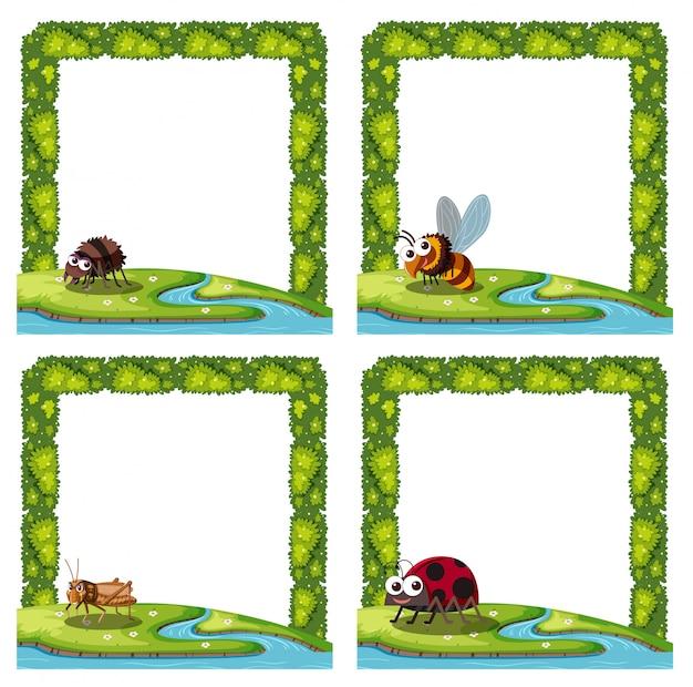 Ensemble d'insecte dans le cadre Vecteur Premium