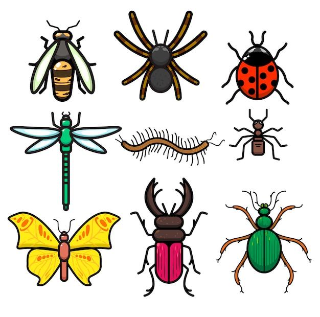 Ensemble d'insectes Vecteur Premium