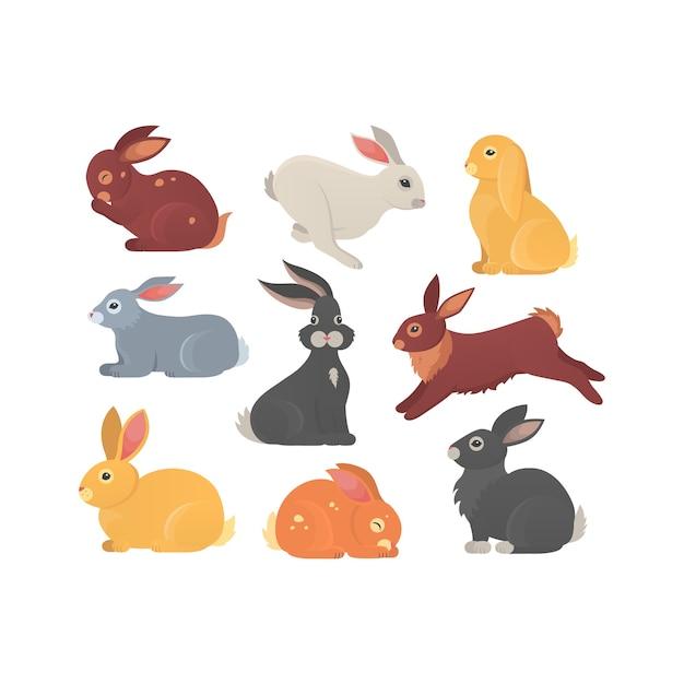 Ensemble De Lapins Mignons. Silhouette D'animal De Compagnie Lapin Dans Différentes Poses. Collection D'animaux Colorés De Lièvre Et De Lapin. Vecteur Premium