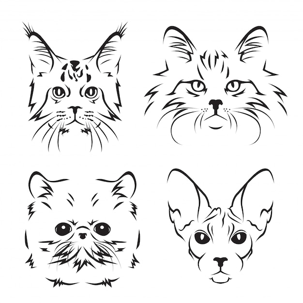 Ensemble De Logo Art Line Mignon Chat Race Vecteur Premium
