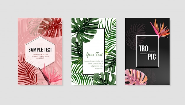 Ensemble de modèle de couverture de conception tropicale. Vecteur Premium