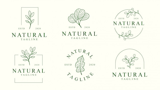 Ensemble De Modèle De Logo Floral Vecteur Premium