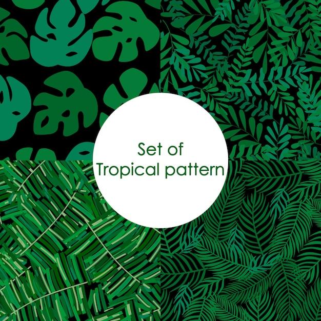 Ensemble de modèle tropical, feuilles de palmier vecteur floral Vecteur Premium