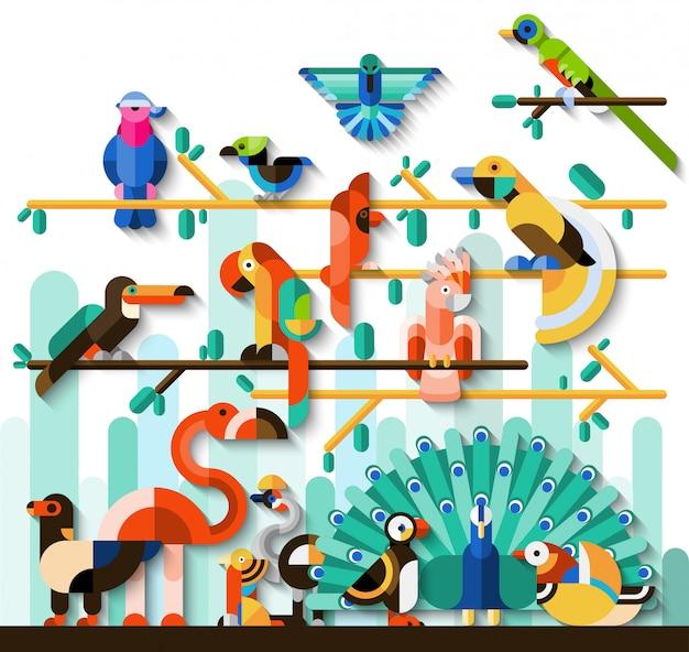 Ensemble d'oiseaux de la jungle Vecteur gratuit