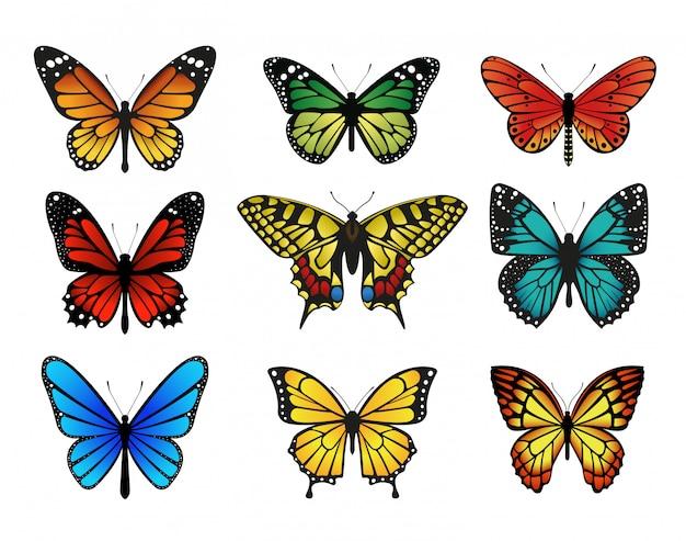 Ensemble De Papillons Colorés. Vecteur Premium