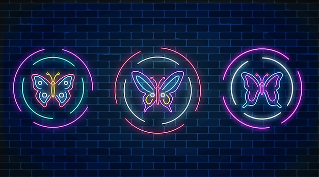 Ensemble De Papillons Lumineux Néon Dans Des Cadres Ronds Sur Le Mur De Briques Sombres Vecteur Premium