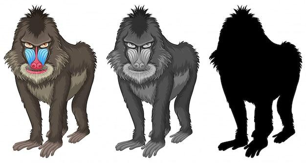 Ensemble de personnage de babouin mandrill Vecteur gratuit