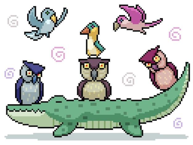 Ensemble De Pixel Art Isolé Groupe D'oiseaux Amicaux Vecteur Premium