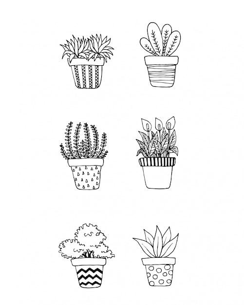 Ensemble de plantes de griffonnage dans des pots Vecteur Premium