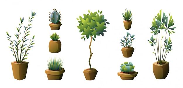 Ensemble de plantes en pot. vecteur. Vecteur Premium
