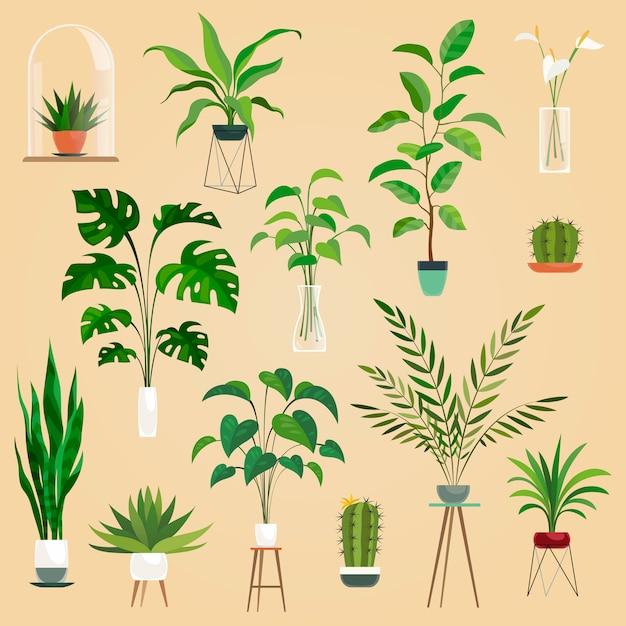 Ensemble De Plantes En Pots Vecteur Premium