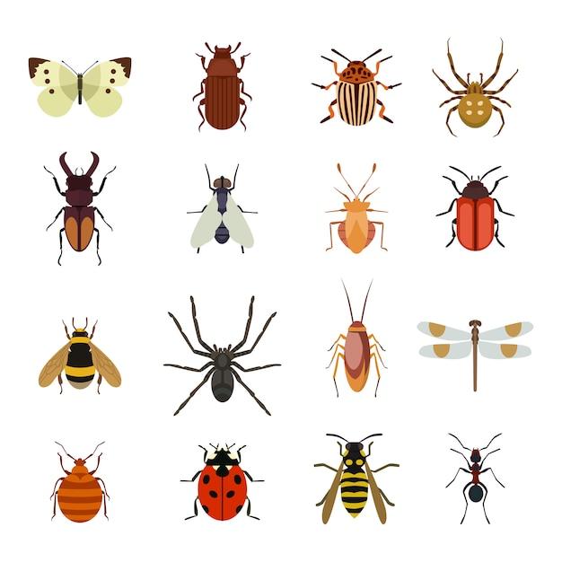 Ensemble Plat D'icônes Insectes Vecteur Premium