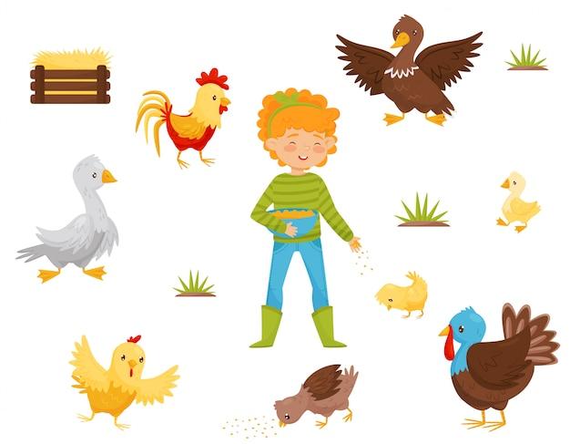 Ensemble Plat D'oiseaux De Ferme, Nid De Poulet Et Fille Avec Un Bol De Céréales. Volaille Domestique. Thème De L'agriculture Vecteur Premium