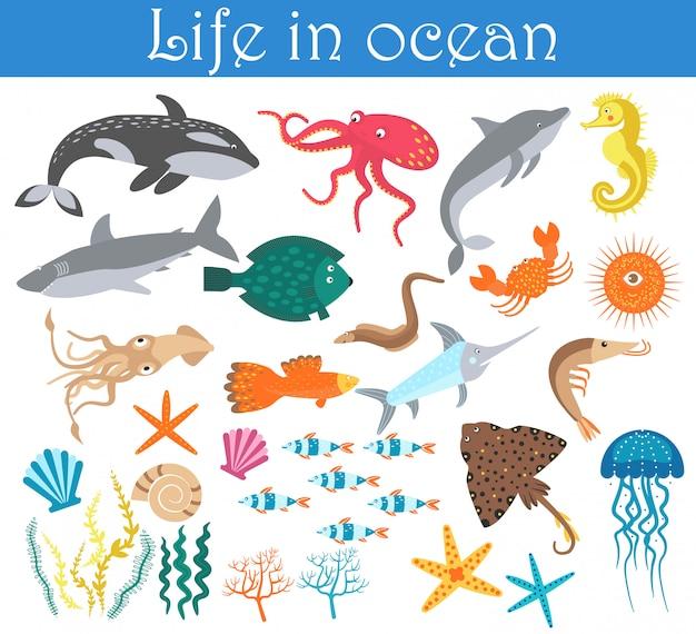 Ensemble de poissons animaux marins de dessin animé Vecteur Premium