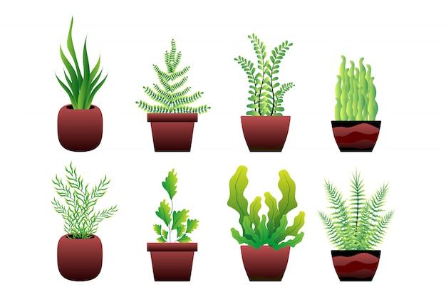 Ensemble de pot de plante verte Vecteur Premium