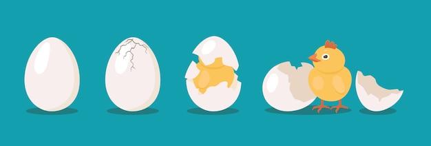 Ensemble De Processus D'oiseau D'incubation Vecteur gratuit