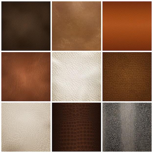 Ensemble Réaliste D'échantillons De Texture De Cuir Vecteur gratuit