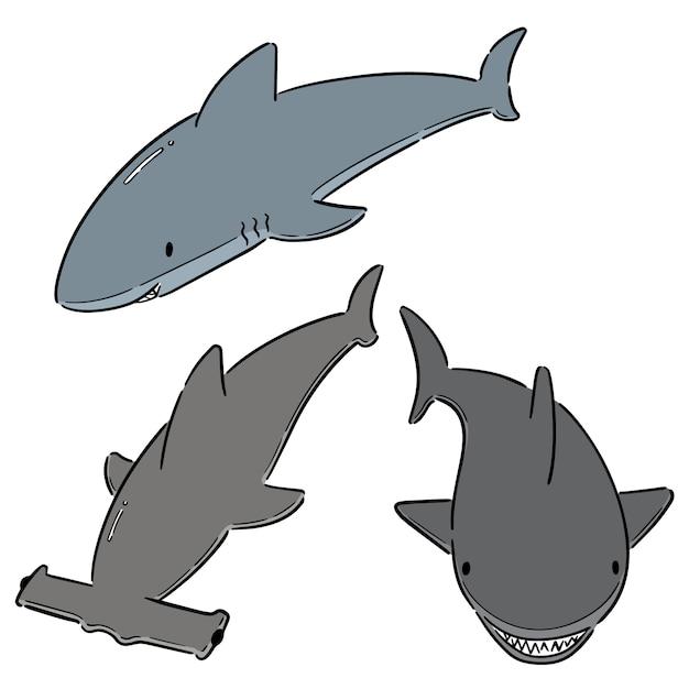 Ensemble de requins Vecteur Premium